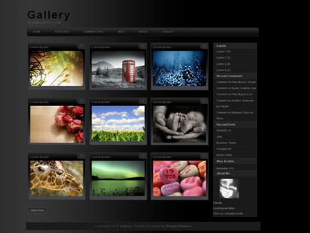 Gallery_450x338.jpg