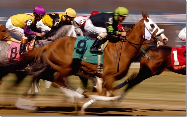 Horse_Racing_1680 x 1050 widescreen