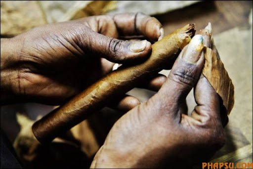 cuban_cigars_cohiba_09.jpg