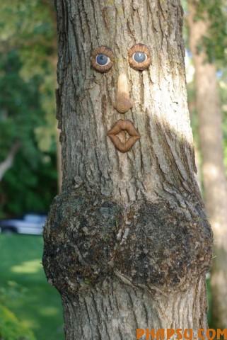 tree_03.jpg