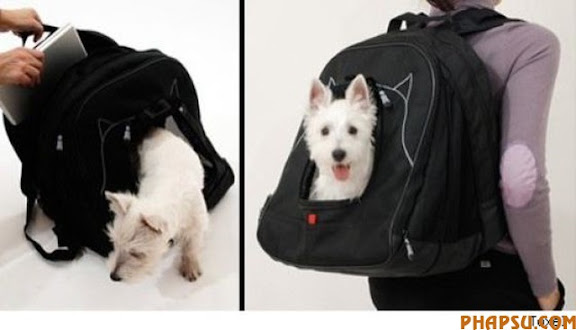 the_craziest_backpacks_640_10.jpg