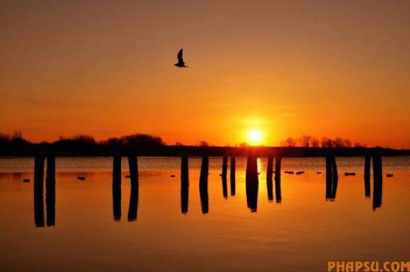striking_reflective_photography_640_11.jpg