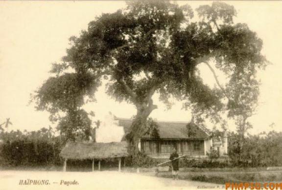 p_haiphong_pagode.JPG