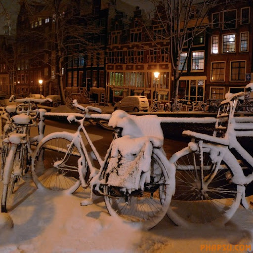 winter_BicycleFeelingthecold_001.jpg