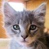 Freida_closeup