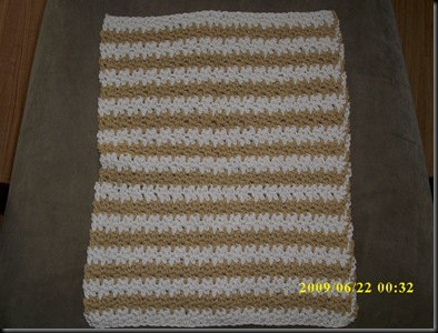 Alisa Dish Towel 3