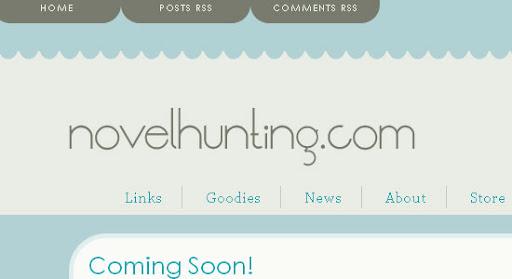 Novelhunting.com