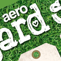 Retailer Aeropostale Uses LT Chickenhawk Font