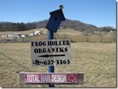 FrogHoller2