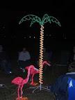 Electric palm tree.jpg