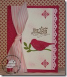 Shannon bird card