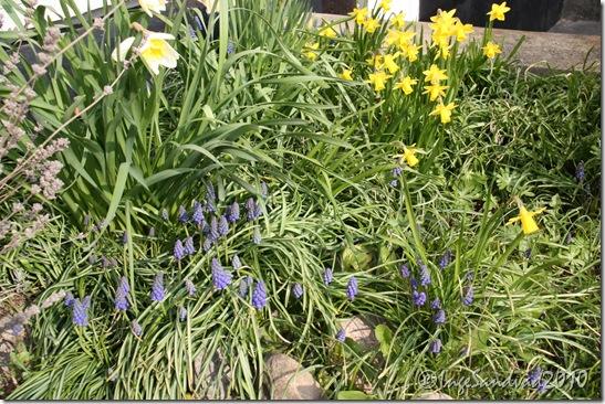 foråret er her 005