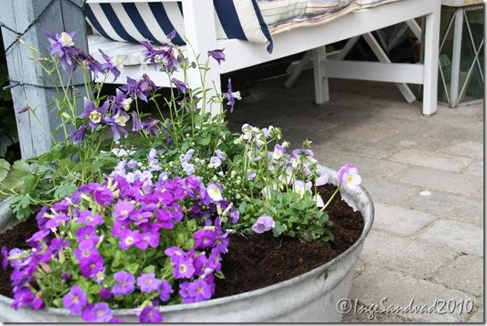 sommerklar terrasse og Bumle 006