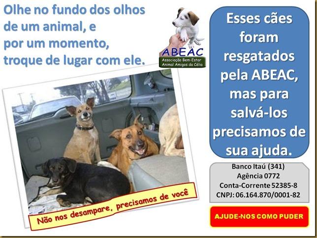 abeac_ajude