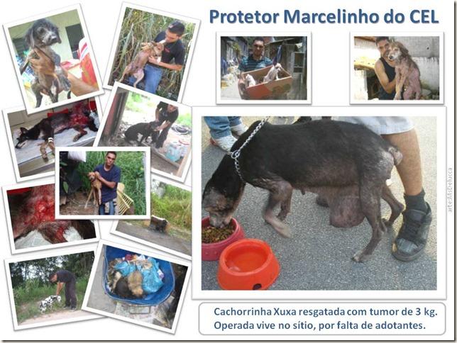 Marcelinho_ (1)