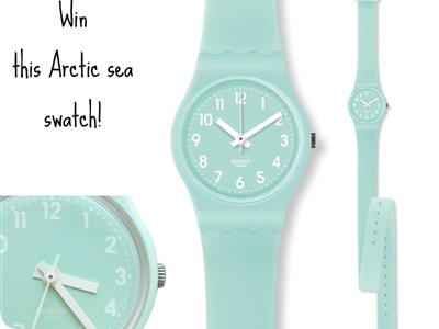 giveaway-irene-'s-closet-swatch-artic-sea