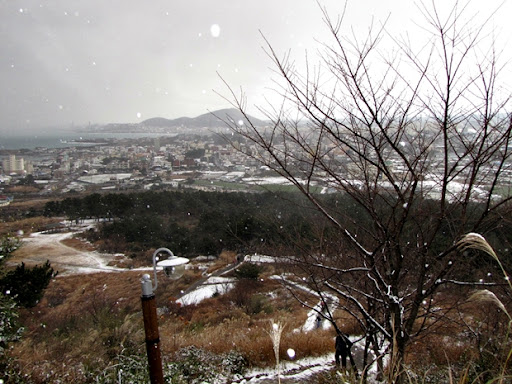Life in Jeju 47 White Christmas in Korea