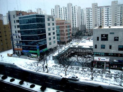 Life in Jeju 51 ข้าวห่อใบบัว ซุปสาหร่ายเกาหลี และปาร์ตี้สา ทเล็กๆ มัคกาลี