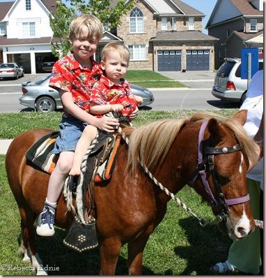 j and s pony1