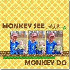 monkey 8 mon