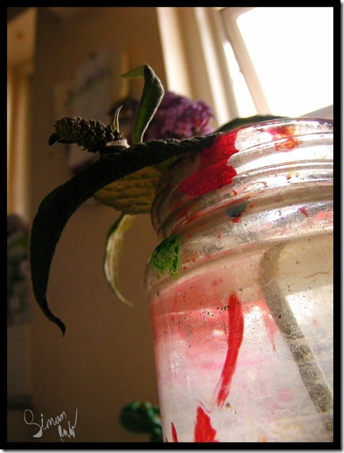 buddleia in jar