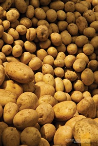 Potatoes at Sagada's Saturday Market