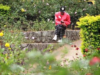 Burnham Park's Rose Garden