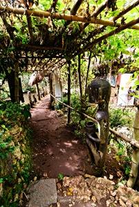 Trellised Path at Tam-Awan Village in Baguio