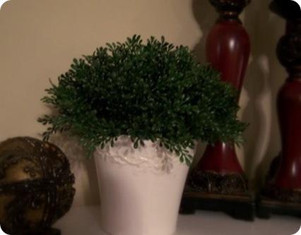 ballard topiary 3