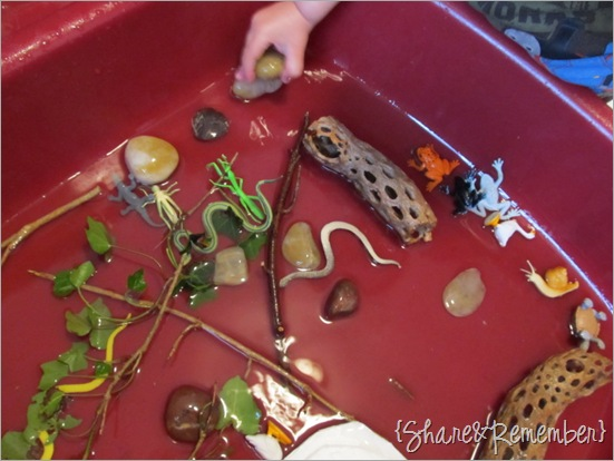Ponds and Muck Sensory Bin