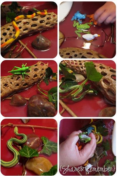 Ponds & Muck pond sensory play