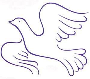 palomas paz (14)