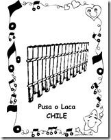 PUSA LACA CHILE 1