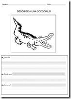 animales primaria - blogcolorear-com (18)
