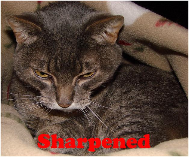 Sharpened Image