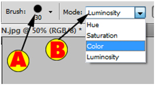 Brush and Mode Options