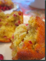 cranberry muffins and spritzer 090