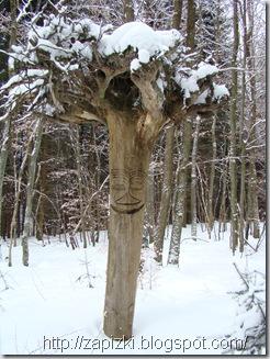 Некоторые деревья уже веселые. И не с проста: в парк Hambachtal приезжает много голландцев. Видимо, привозят с собой.