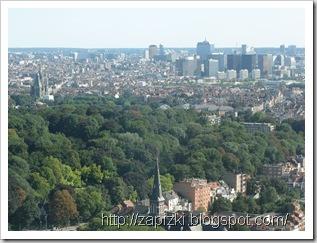 Вид на Брюссель с Атомиума.