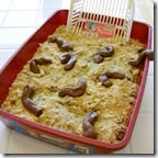 kitty litter cake