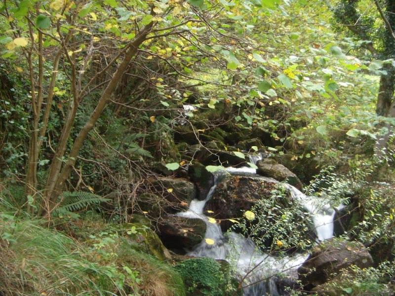 El río 2