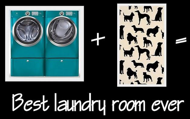 Odi Et Amo Best Laundry Room Ever
