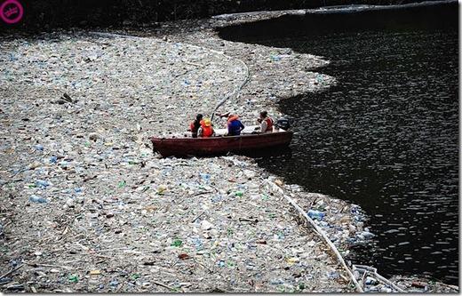 more freak show blog poluição e as pessoas (6)