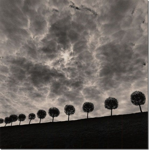 more freak show blog michael kenna Silent World (11)