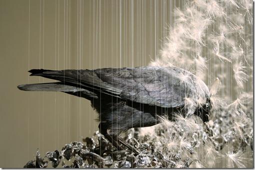 art claire morgan (2)