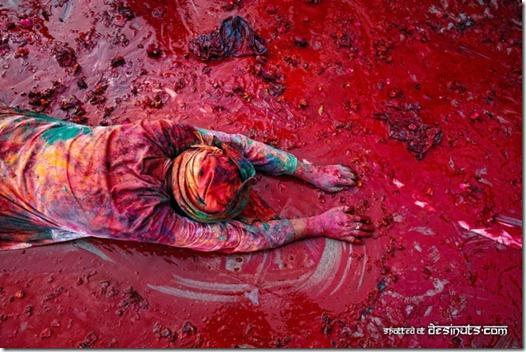 festival das cores índia holi (3)