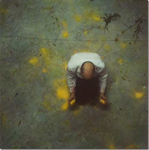Robert and Shana parkeharrison (27)