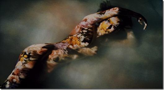 Melvin Sokolsky fotos variadas  (17)