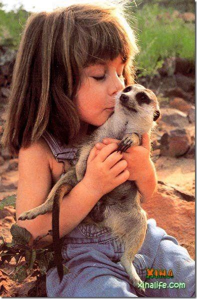 Book livro Tippi pequena garota e sua amizade com Animais selvagens  (4)