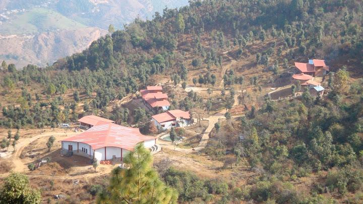 'the misty mountains' – jhaltola (Uttarakhand)